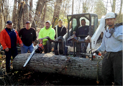 expertise-atlanta-tree-removal