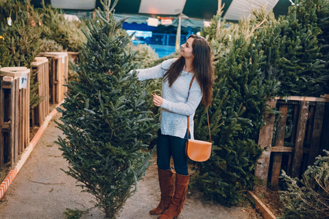 Christmas tree selection Alpharetta Ga